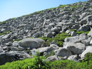 Mount Granite 015